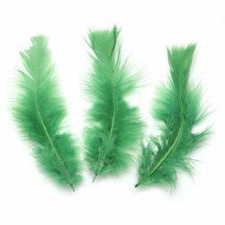 10бр. декоративни пера в зелено -  120~170x35~40 мм