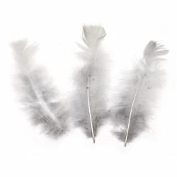 10бр. декоративни пера в сиво -  120~170x35~40 мм