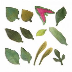 Щанца за изрязване на листа - Sizzix - Thinlits Dies - Leaves, Garden