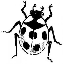 Гумен печат на дървено блокче калинка - Art Stamps - Ladybird