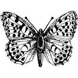 Гумен печат на дървено блокче пеперуда -  Art stamps - Queen Of Spain
