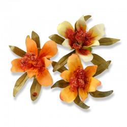 Шаблон за изрязване - Sizzix Thinlits Die Set 3PK - Flower, Mini Lily